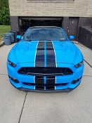 '15, '16, '17, '18 MUSTANG 2 COLOR DUAL STRIPE KIT SHELBY STRIPE